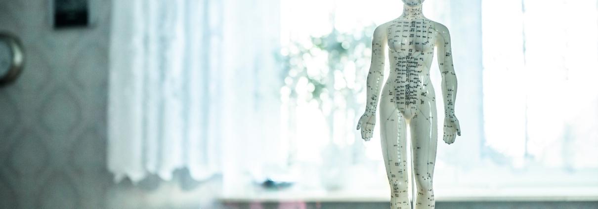 Eine Figur an der Akupunkturpunkte aufgeführt werden